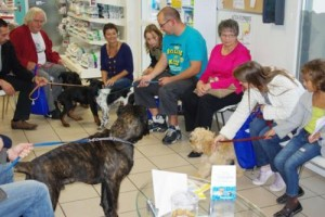 reunion-chiot-veterinaire-beaugency-1