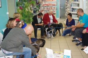 reunion-chiot-veterinaire-beaugency-2
